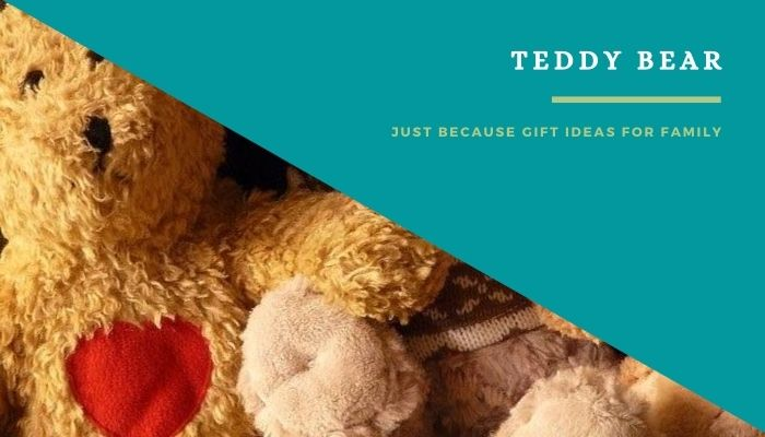 A Teddy Bear to Young Sibling