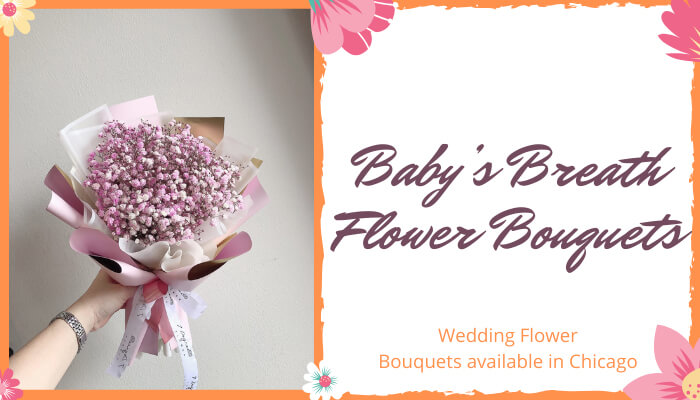 Baby's Breath Flower Bouquets