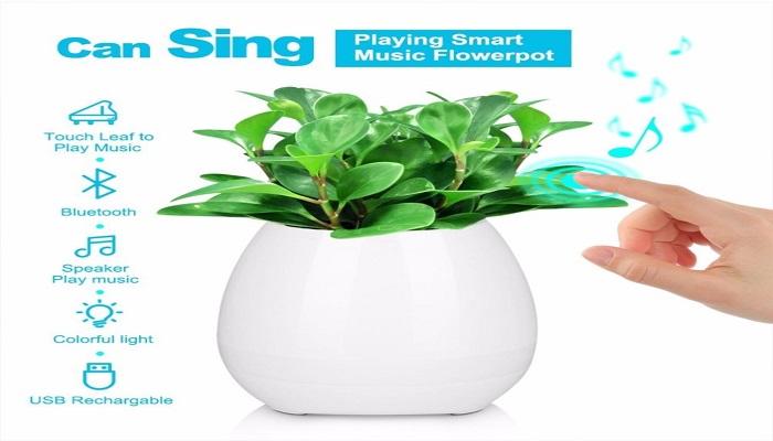music flowerpot