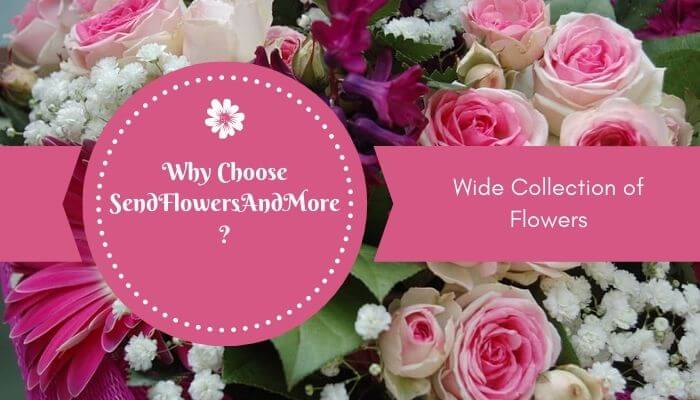 Wide Collection of Flowers