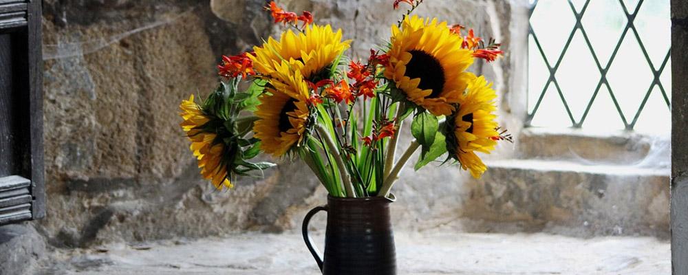 Corporate Sunflower
