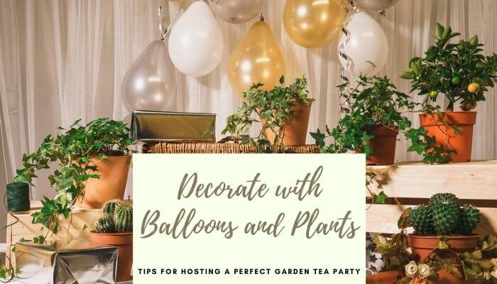 Decorate Garden with Balloons and Plants