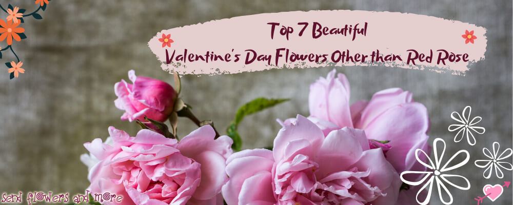 Top 7 Beautiful Valentine's Day Flowers Other than Red Rose