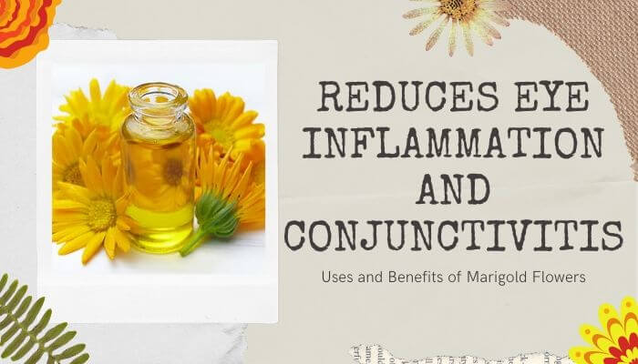 Reduces Eye Inflammation and Conjunctivitis